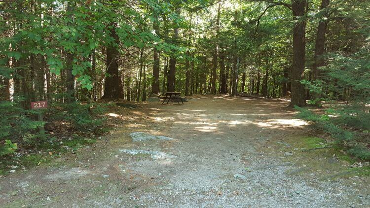 ashuelot-river-campground